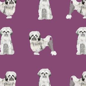 lowchen dog fabric - little lion dog fabric, dog fabric, lowchen fabric - purple