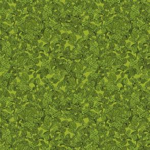 Oregano on green