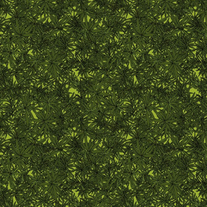 Rosemary on green
