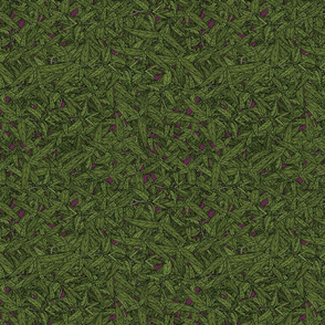 Tarragon on dark magenta