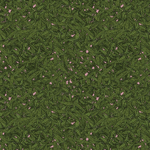 Tarragon on dusky pink