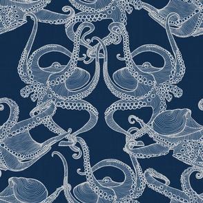 Cephalopod - Octopi smaller - Marine