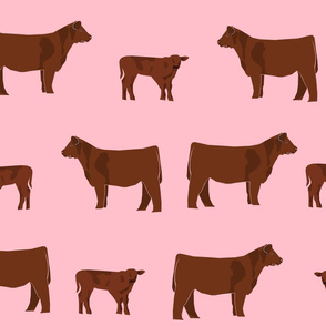 red angus fabric - angus cattle, angus fabric, cow fabric, cattle fabric - pink