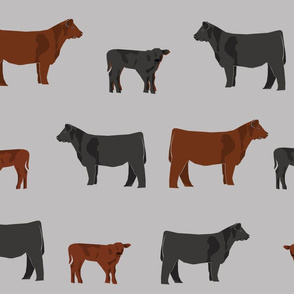 black and red angus cow fabric - cattle fabric, cow fabric, angus fabric - grey