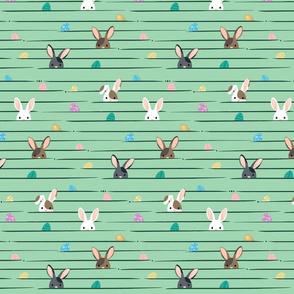 Peek a Boo Easter Bunnies © Jennifer Garrett