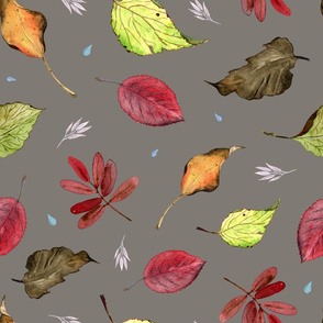 Fall Leaves (on grey)