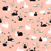 Peach Swan Lake