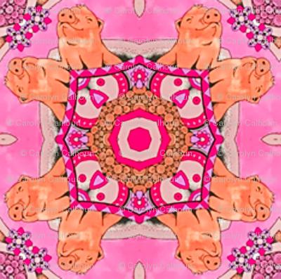 Rrrpink-pigs-kaleidoscope-final_preview