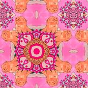 Pink Piglets Kaleidoscope