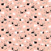 Peach Swan Lake | SMALL