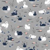 Gray Swan Lake