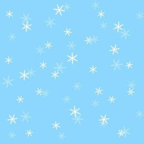 Snowflake Coordinate