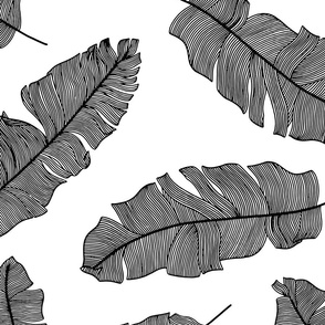 LARGE tropical banana leaves - white and black