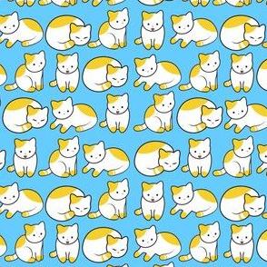 Cat Pattern Blue