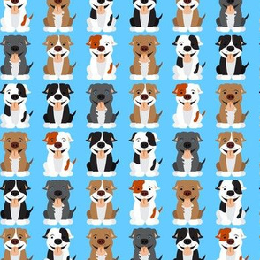 Cute Pitbull Pattern Blue