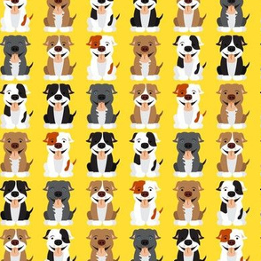 Cute Pitbull  Pattern Yellow