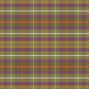 Bird in the Hat - Green Plaid