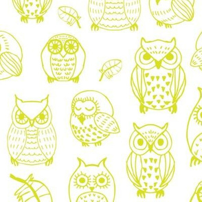 yellow-green owls