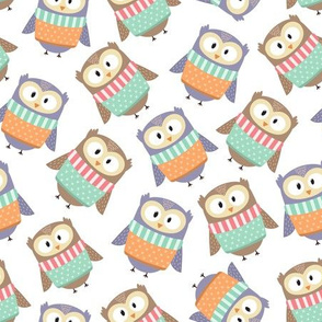 Winter funny owls in sweaters