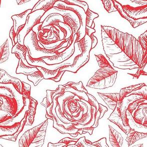 Macro Roses Engraving Drawings