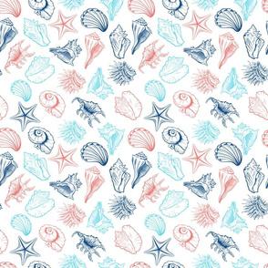 Colorful Childish Seashells