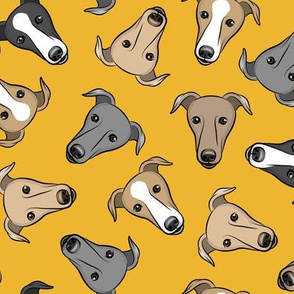 greyhounds - yellow - greyhound dog breed face - LAD19