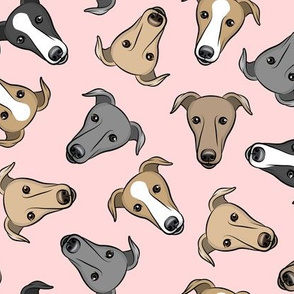 greyhounds - pink - greyhound dog breed face - LAD19