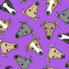greyhounds - purple - greyhound dog breed face - LAD19