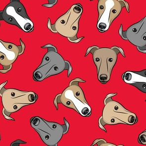 greyhounds - red - greyhound dog breed face - LAD19