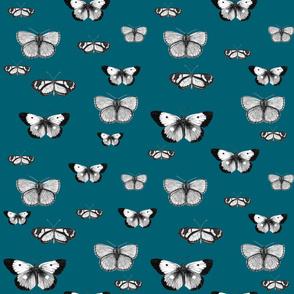 Butterflies Blue