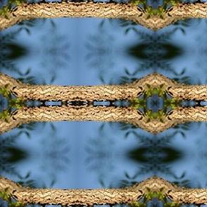 SnakeskinTreebark
