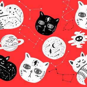 Blood Orange Cat Consteltion