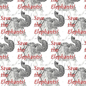 Save the Elephants!