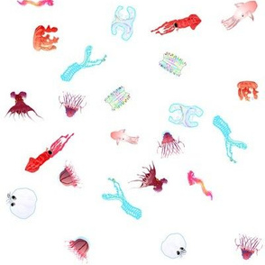 deep sea scatter X on white