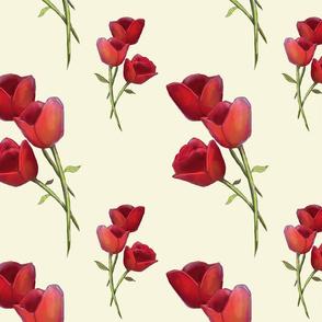 tulip chintz