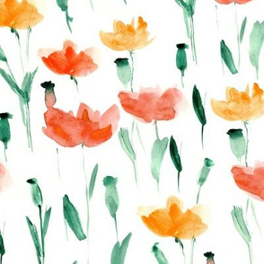 Watercolor coral poppies
