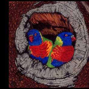 Rainbow Lorikeets - Birds