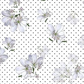 Coriander Flowers | White | Black Polka Dots