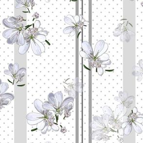 Coriander Flowers | White/Gray Stripes + Polka Dots