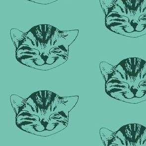 kitty medium spearmint forest