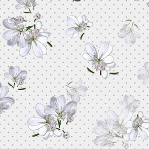 Coriander Flowers | Pale Wm Gray + Gray Polka Dots