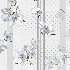 Coriander Flowers | Pale Wm Gray + Gray Polkadots/Stripes