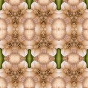 Spoonflower5