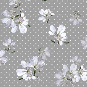 Coriander Flowers | Warm Med Gray + Wt Polka Dots