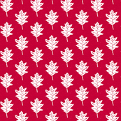 Little Red Oak  - Cherry Red