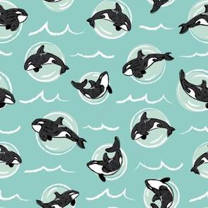 Orca Bubbles in Sea Foam