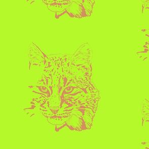 Bobcat II Lg by DulciArt, LLC