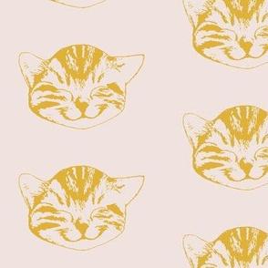 kitty medium first light goldenrod