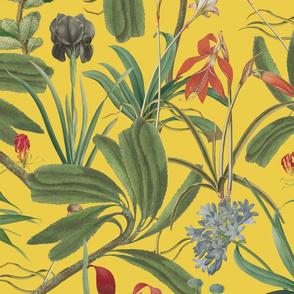 Chintz Botanical Stravaganza