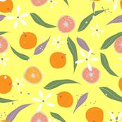 Citrus (SF02)
